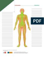 Treffpunktberuf Pflege-nerven Wortschatzliste1