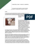 IMPORTANCIA DE LA GANADERÍA VACUNO Y SU IMPACTO AMBIENTAL