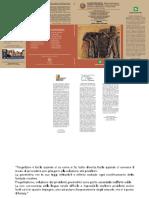 Glossario Delledilizia (Z-lib.org)