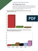 BudgetSurveyReport2011