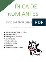 CSO - Clínica de Rumiantes
