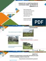 avances_de_la_investigacion_de_cenipalma_sobre_requerimientos