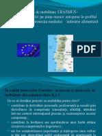 Proiect de Mobilitate Portugalia - Colegiul Economic Ramnicu Valcea
