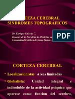 253843707 4 Sindromes Topograficos