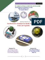 NDQAT Seminar Report complete