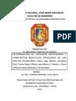 Abelardo Tesis Bachiller 2019