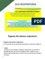 BIOFISICA RESPIRATORIA   13