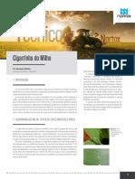 informativo-artigo-06-Alessandro
