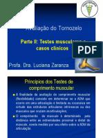Aula- Testes Musculares