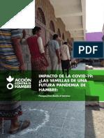 informe-covid-hambre-es_jul20_ok