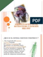 Identificación de la estructura y función del SNP