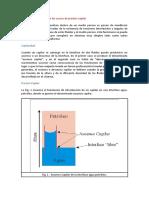 Conceptos básicos sobre las curvas de presión capilar