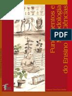 Livro - Fundamentos e Metodologia Do Ensino de Ciencias