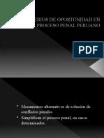 Diapositivas Maestria Tema_ Principio de Oportunidad