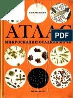 Kraevskii via Atlas Mikroskopii Osadkov Mochi (1)