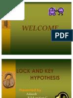 lockn key hypothesis