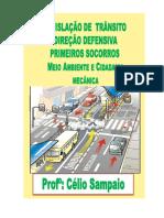 APOSTILA CÉLIO PRONTA legislação de transito