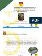 PRESENTACION CICLOS ELEMENTOS DE CARACTERIZACION 2011