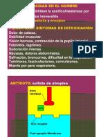 INSECTICIDAS_OP_Y_CARBAMICOS_2
