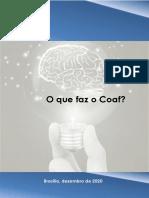 O que faz o Coaf - Versão 2020-12-30 publicação atualizada