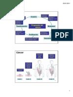 cancer y marcadores tumorales Clase BQC3