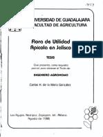 Floracion Apicola Jalisco