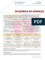 Coordinación-Química-en-Animales-para-Tercer-Grado-de-Secundaria