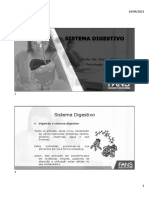 7) SISTEMA  DIGESTIVO