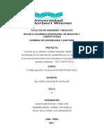 Formulacion y Evaluacion de Proyecto Final Software Contable Conta Tec (1)