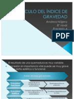 CÁLCULO DEL ÍNDICE DE GRAVEDAD