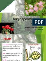 Angiospermas Fisiologia e Anatomia - Parte 2