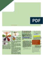 Folleto Sensibilizacion para la alimentacion saludable docx