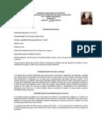 Informe Irianny Castillo