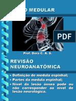 8 - LESÃO MEDULAR