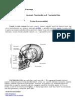 Anatomie_Functionala.Trifu_Dragos_AnI_1.4
