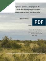 Boeri_Patricia_Tesis.pdf-PDFA
