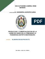 proyecto PRODUCCION Y COMERCIALIZACION DE LA CARNE DE CERDO EN LA COMUNIDAD LA PONDEROSA-DISTRITO MONTENEGRO