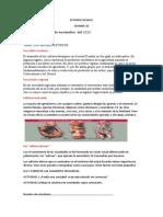 ESTUDIO SOCIALES QUINTO EGB SEMANA 10 (1)