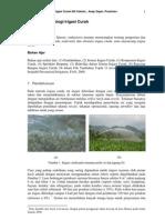 Topik 11 Kuliah Irigasi Curah -Dedi-Asep-prastowo