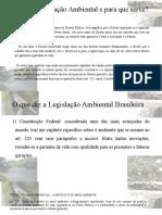 Legislação ambiental - correto
