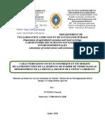 Mémoire de nguedia version  finale du 04 Juillet 2018