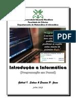 Manual_de_Introducao_a_Informatica_2019_-_(Pascal)_