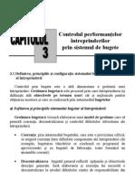 Controlul performanţelor intrep prin sist de bugete