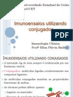 5_Imunoensaios utilizando conjugados-compactado