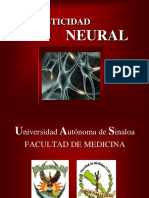 plasticidadneural-090528163939-phpapp01