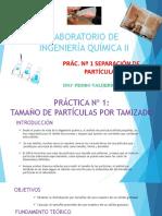 PRACTICA 1 SEPARACION DE PARTICULAS