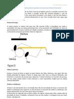 Breves Instruções sobre postura e posição correta ao tocar Flauta Transversal