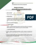 TDR Servicio de diseño e instlación de software (falta terminar)