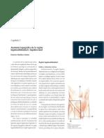 AEC HERNIAS 3 - Anatomía Topográfica de la Región Inguinoabdominal e Inguinocrural