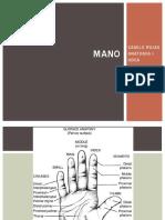 anatomiamano-180610233814 (1)